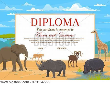 Kids Diploma Certificate Vector Template With African Safari Animals. Education Award Of School, Pre