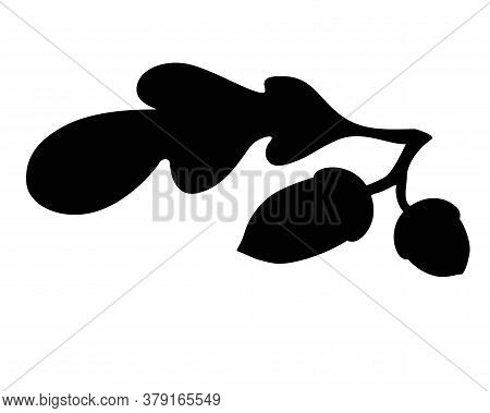 Acorns And Oak Leaf - Black Vector Silhouette For Pictogram Or Logo. Silhouette Of An Oak Branch Wit