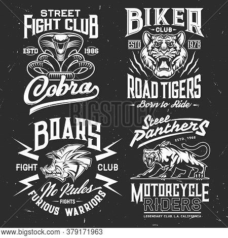 Tiger, Cobra, Panther And Boar T-shirt Print Vector Mockup Of Fight Sport And Biker Club Custom Appa