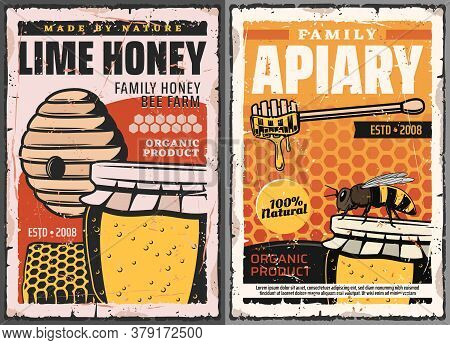 Honey And Honeycombs With Bee, Vector Beekeeping Farm Apiary. Wild Bee Hive With Honey Jar And Woode