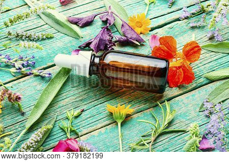 Bottle With Herb Essential Oil