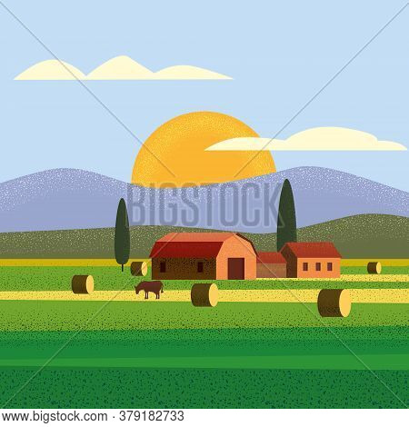 Rural Farm Landscape Field Country House, Cows. Summer Hills Sunset Farmland. Vector Illustration Tr