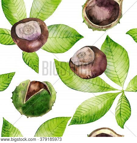 Watercolor Seamless Pattern With Green Leaves And Chestnuts. Backdrop With Fall Season Foliage On Wh