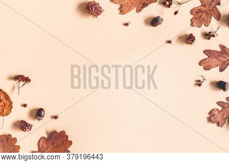 Autumn Composition. Frame Made Of Oak Leaves, Flowers, Acorns On Beige Background. Autumn, Fall Conc