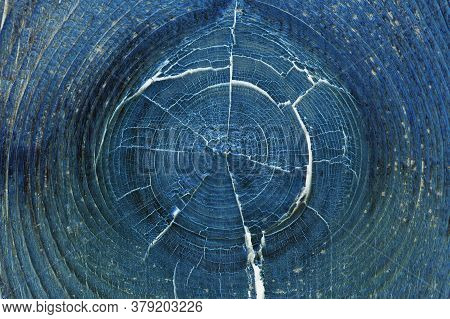 Dark Blue Abstract Horizontal Background Or Wallpaper. Inverted Picture. Cracked Bough On An Old Dri