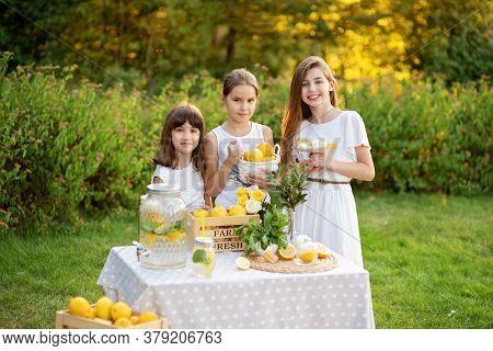Cute Little Children Selling Lemonade In Park. Homemade Lemonade Sale Concept. Lemons, Mint, Cocktai