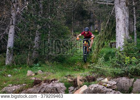 Man Doing A Mountain Bike Downhill In A Forest, Concept Of Sport And Healthy Lifestyle