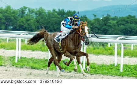Pyatigorsk,russia - August 2,2020:horse Race For The Traditional Prize Big All-russian In Pyatigorsk