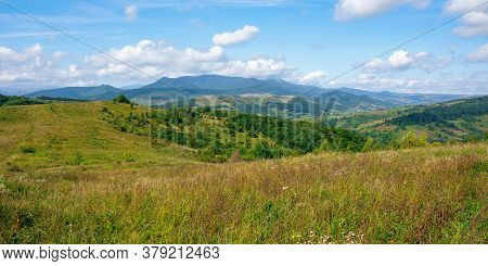 Carpathian Countryside In September. Mountain Landscape On A Sunny Day. Trees On The Meadow. Sky Wit