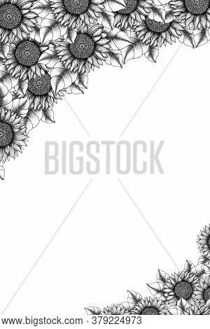 Vintage Floral Frame Background, Hand Drawn Ink Floral Card Design, Botanical Frame Decoration With
