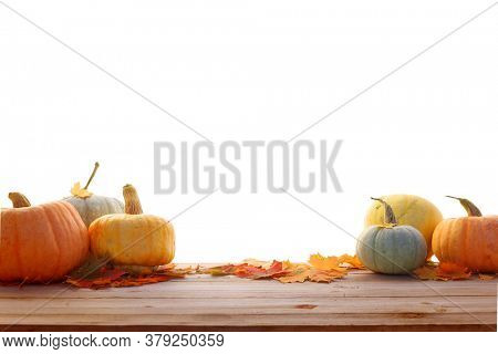 Pumpkins and maple leaves isolated on white background.Harvest or Thanksgiving table