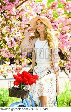 At The Flower Shop. Beautiful Spring Season Nature. Cherry Tree Blooming Flowers. Blossoming Sakura.