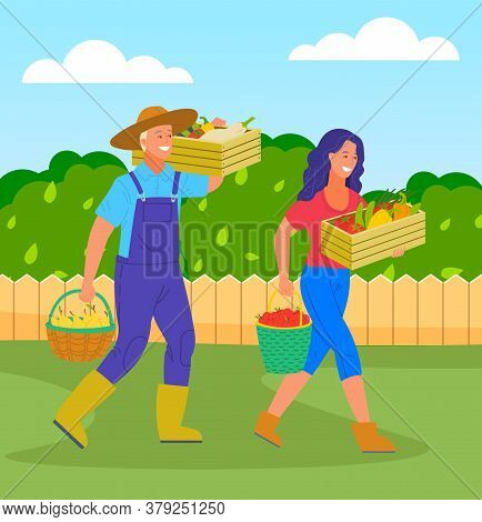 Woman And Man Farmers With Harvest In Boxes And Baskets. Girl With Box Of Vegetables And Bucket Of A