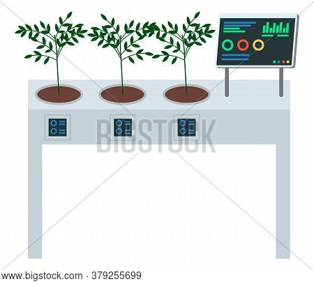 Concept Of Digital Table For Growing Plants. Growbox Control With Computer, Show Statust Of Soil Moi