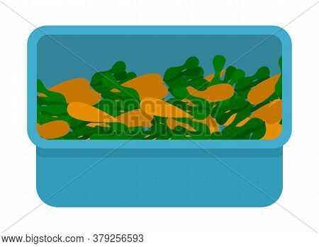 Container With Ripe Fresh Carrots, Blue Box With Vegetables, Agriculture, Crop, Fresh Organical Food