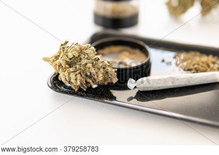 Grinder And Cannabis Weed Bud. The Pot Leaves On Buds Cbd. Marijuana Nature Bud Close Up. Thc Kief I