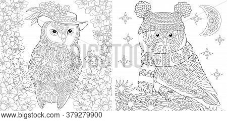 Coloring Pages. Two Owls In Cute Hats Showing Different Seasons: Spring And Winter. Line Art Design