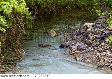 Beautiful Small Mountain River  Among The Green Forest In Carpathian Flysch Belt. Carpathians. Ukrai