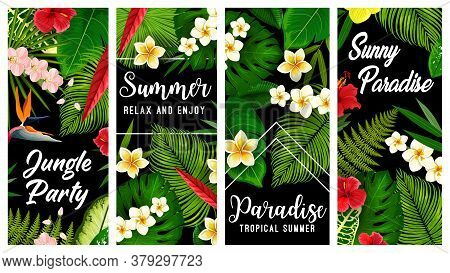 Tropical Plants And Flowers Vector Banners, Exotic Blossoms Hibiscus, Orchid, Strelitzia Or Plumeria