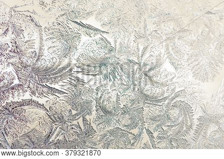 Pattern Of Magical Fantastic Plants. Abstract Light Yellow Beige Background Or Wallpaper. Drawing Of