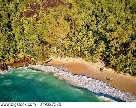 Beautiful beach with palm trees aerial top view drone shot at Seychelles, Mahe