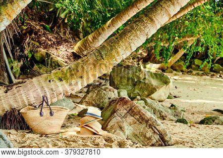 Beach bag and hats by palm tree at Mahe, Seychelles.