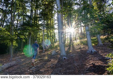 Young Man Walking In Forest With Sun Rays Shine Through Trees. Ore Mountain, Czech Landscape