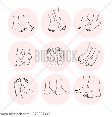 Collection Of Bare Human Man And Woman Feet Pairs Arranged In Different Poses  Isolated On White Bac