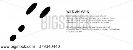 Banner Of Trace Of Forest Animal, Traces Of Hare, Vector Illustration