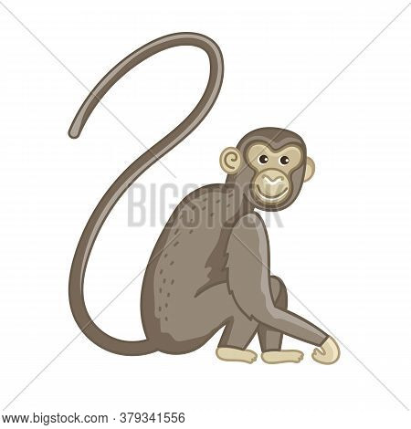 Spider Monkey. Isolated Wild Ape With Long Tail. Cute Primate Mammal Cartoon Character Icon. Vector
