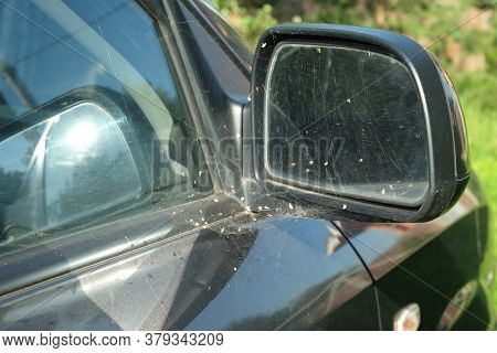 Conceptual Photo With Spider Web On Long Time Motionless Abandoned Old Passenger Car Side Mirror Clo