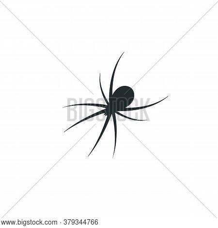 Spider Vector Icon. Common Eight Legged Arachnid Silhouette.