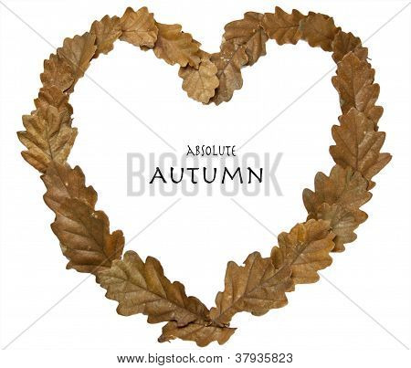 Absolute Autumn