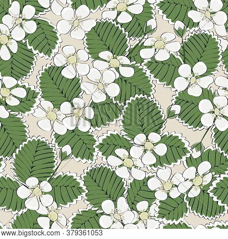 Vector White Strawberry Blooms With Green Leaves On Beige Background Seamless Repeat Pattern. Backgr