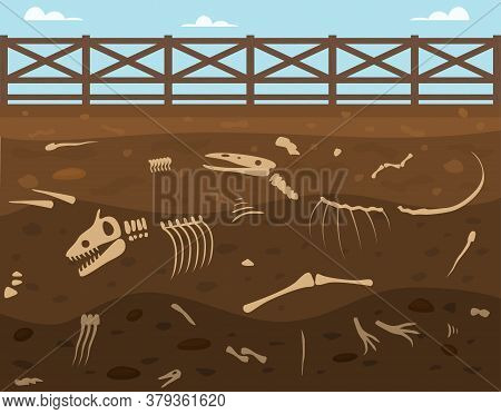 Cartoon Soil Layers With Dead Animals Card Background Archeology Bones Elements Scene Discovery Conc