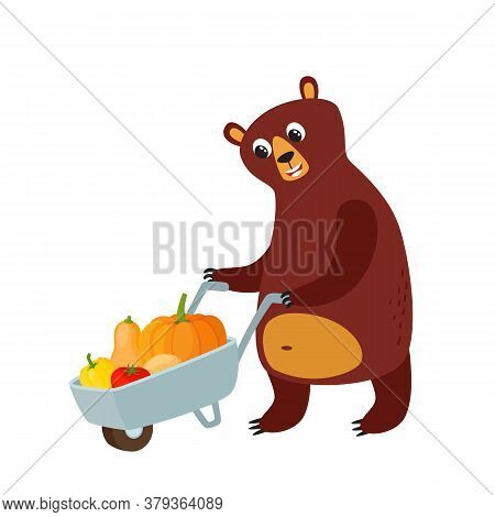 Farmer Bear And Handcart With Vegetables Isolated On White.