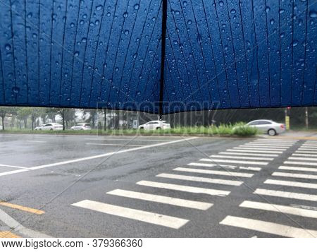 Seeing The Crosswalk Under The Umbrella In A Rainy Day