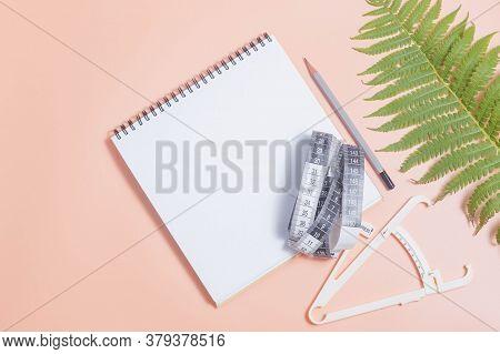 A Clear Sheet.notepad, Caliper, Centimeter, Walnut Leaf.