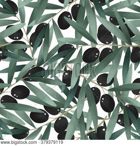 Olives Branch, Green Herbal Organic Nature Seamless Pattern Illustration