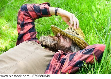 Time To Relax. Worker In Rural Farm. Farmer Relax On Green Grass. Ecology Concept. Green Field In Su