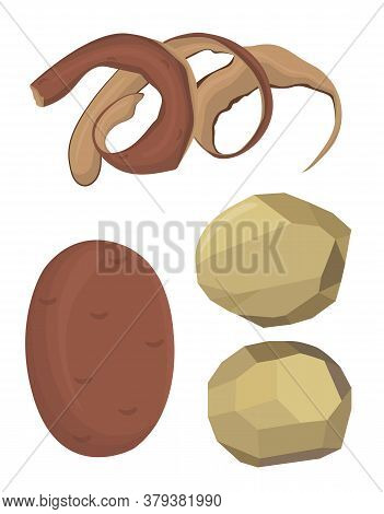 Vector Illustration Of Potatoes, Peeled Potatoes, Potato Peel