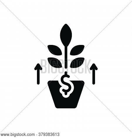 Black Solid Icon For Growth Development Evolution Flourish Rise Increase Profit