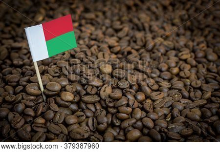Madagascar Flag Sticking In Roasted Coffee Beans. The Concept Of Export And Import Of Coffee