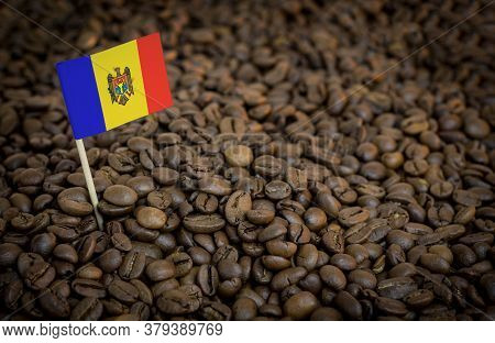 Moldova Flag Sticking In Roasted Coffee Beans. The Concept Of Export And Import Of Coffee