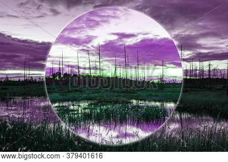Modern Aesthetic Art Collage With Evening Swamp Landscape. Natural Marsh View In Bright Neon Colors.