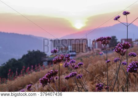 Summer Nature Background With Grass And Flower Village Farm House And Mountains Back With Bright Sun