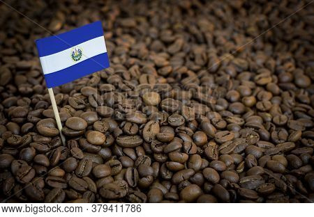 Salvador Flag Sticking In Roasted Coffee Beans. The Concept Of Export And Import Of Coffee