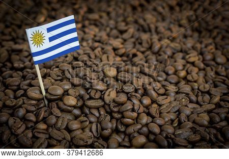 Uruguay Flag Sticking In Roasted Coffee Beans. The Concept Of Export And Import Of Coffee