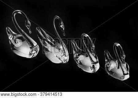 Crystal Glass Swans Figurines On A Dark Background