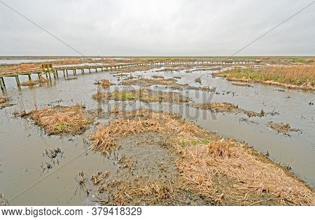 Boardwalk Through A Remote Wetland In Anahuac National Wildlife Refuge In Texas